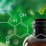 El aceite de cannabis ya es legal en el deporte y no saldrá en el antidoping